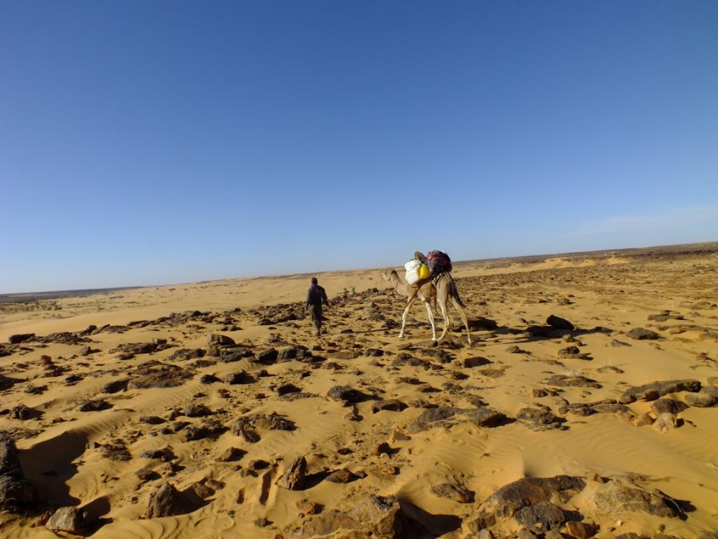 Sahara mauritanien
