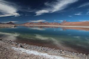 Bruno - Lagunes colorées du désert d'Atacama 1 (Chili)