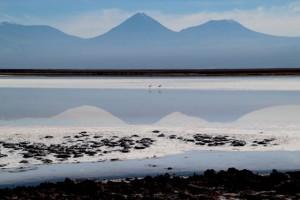 Bruno - Lagunes colorées du désert d'Atacama 2 (Chili)