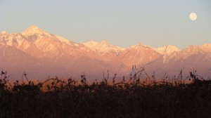 Florent -  Valle Hermoso, près de Las Lenas, Mendoza (Argentine)