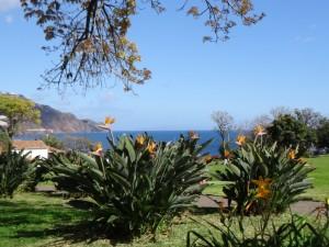 Emile - Parc municipal Funchal à Madère (Portugal)