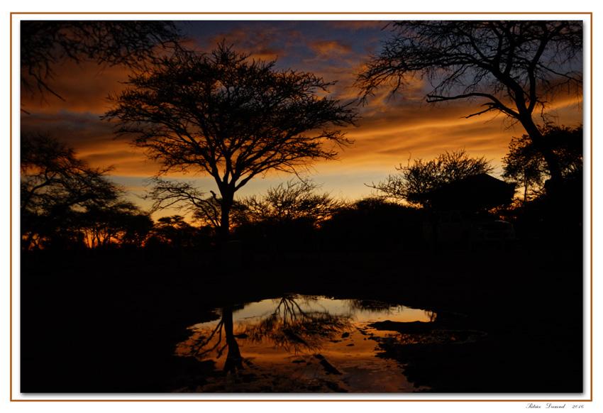 etosha-coucher-de-soleil